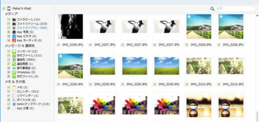 FoneLab: iCloudバックアップからiPhone写真を復元